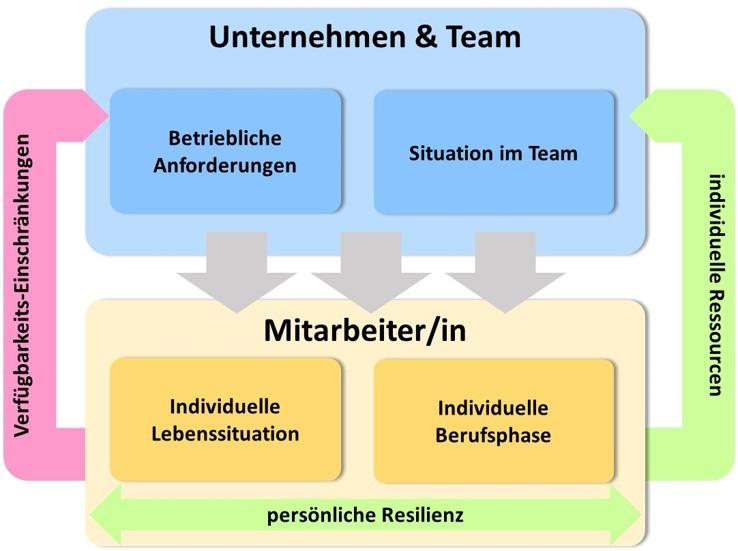 Lebensphasen und Team-Situation - Grafik